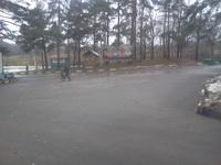 18 декабря. В зоне отдыха Битца пасмурно и дождливо