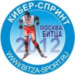 Кибер-Спринт 2012